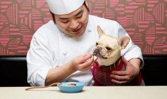 YASAIYA teppanyaki – Roppongi Japan Best Restaurant