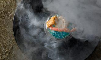 Molecu-L. japan restaurant