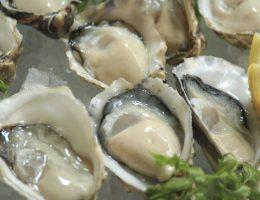 PESCADERIA 赤坂店 Japan Best Restaurant