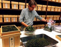 OCHARAKA Japan Best Restaurant