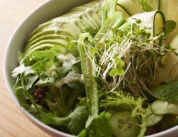 Sustainable Kitchen Rosy Japan Best Restaurant