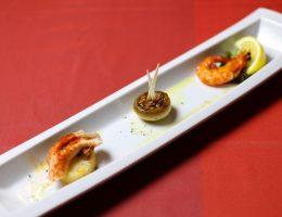 Spain Club – Ginza Japan Best Restaurant